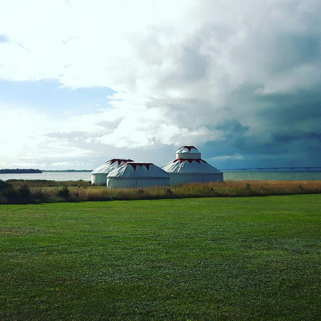 A trio of our Palace, Lotus & Boudoir yurts